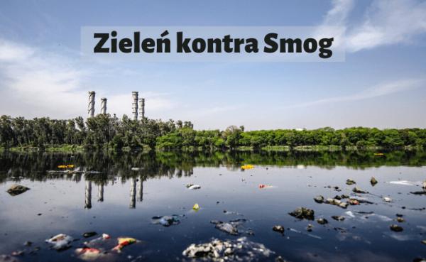 zieleń kontra smog